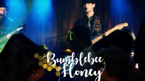 Bumblebee Honey Featured Photo