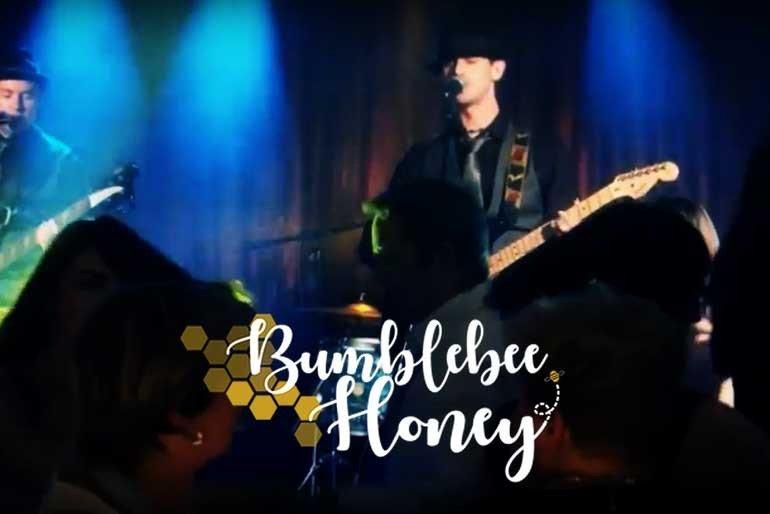 Bumblebee Honey Photo 1
