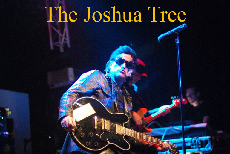 The Joshua Tree - U2 Tribute Photo 2 | Hooley!